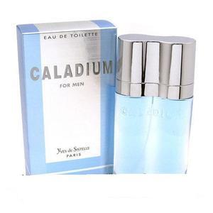 Caladium for Men